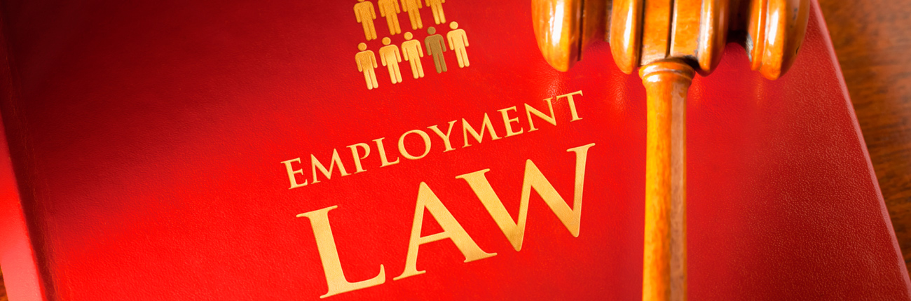 employment law in u s Employment law and compliance concerns the legal framework within which organizations must operate in their treatment of employees without a doubt, the most important anti-discrimination law is title vii of the civil rights act of 1964 title vii was initially motivated by the us government's.